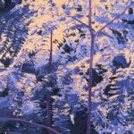 Richard WhiteBlue Brackenoil on linen22 x 24 inches