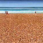 Tim FargherShingle Beach, Morningoil on canvas14 x 27.5 inches